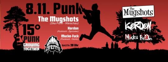 15 Grad Punk
